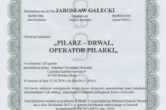 Dyplom10-Jardach