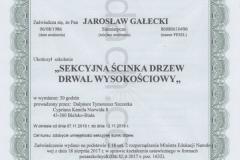 Dyplom9-Jardach